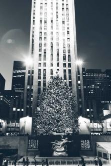 Christmas_2011-476